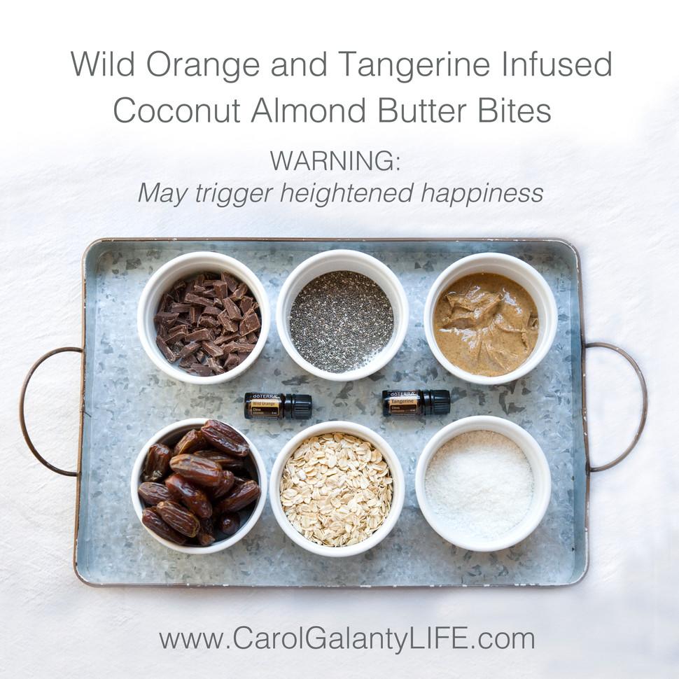 Wild Orange Energy Bites