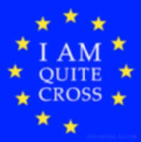 Quite Cross | Pro EU Social Media Profile Images | European Union | Brexit