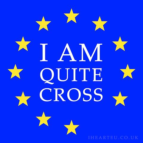 I Am Quite Cross | Pro EU Social Media Profile Images | European Union | Brexit