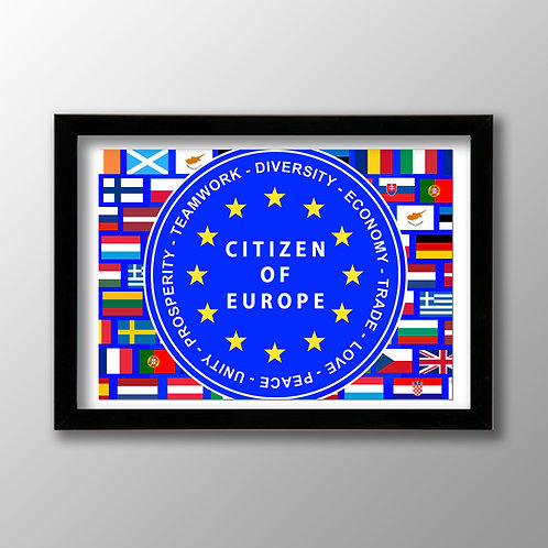 Pro EU Poster - Citizen of Europe / Reasons to Remain