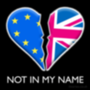 Not In My Name | European Union Pro EU Social Media Images, Stop Brexit Collection, bollocks to brexit, stop article 50, EU merchandise, eu gifts, word up design, europa, Flag of Europe