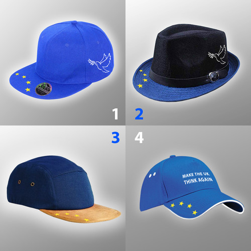 fc8790cdce9ad European Union Hats