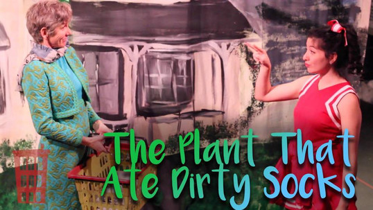 Patty Jenkins in The Plant that Ate Dirty Socks at the Redhouse Arts Center, Syracuse