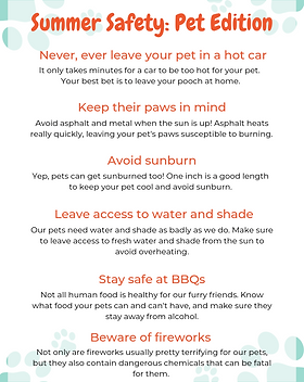 Summer Safety_ Pet Edition.png