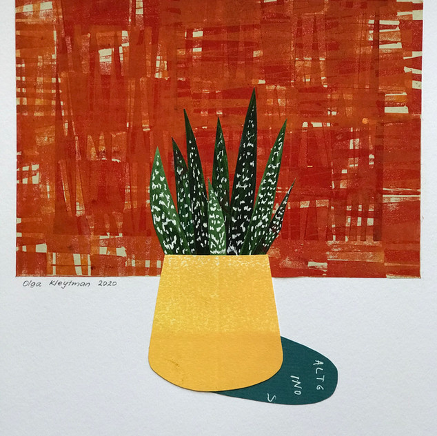 Aloe Yellow Pot