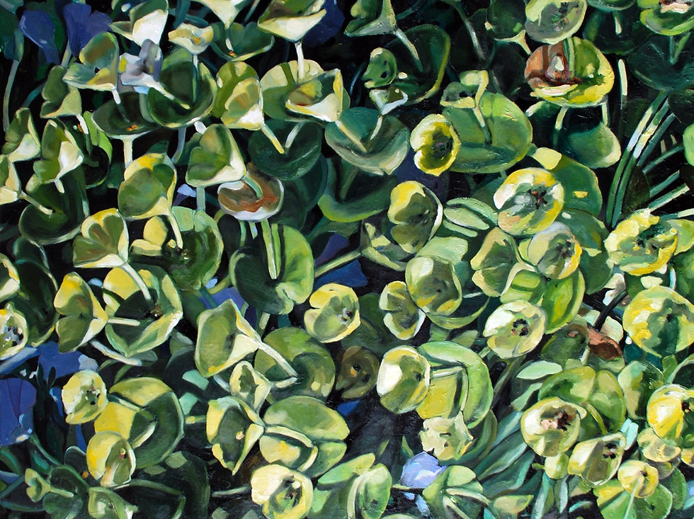 Olga Kleytman Fine Art Gallery