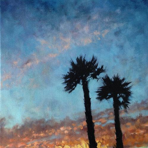 Sunset at Westborough