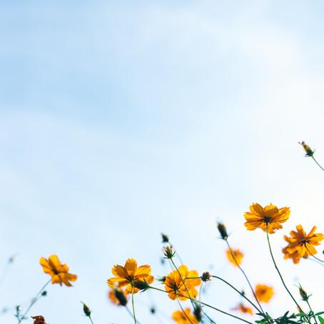 Midsummer, Summer Solstice