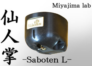 Saboten L Stereo Cartridge