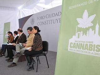 "México atascado en regulación de la ""cannabis"""