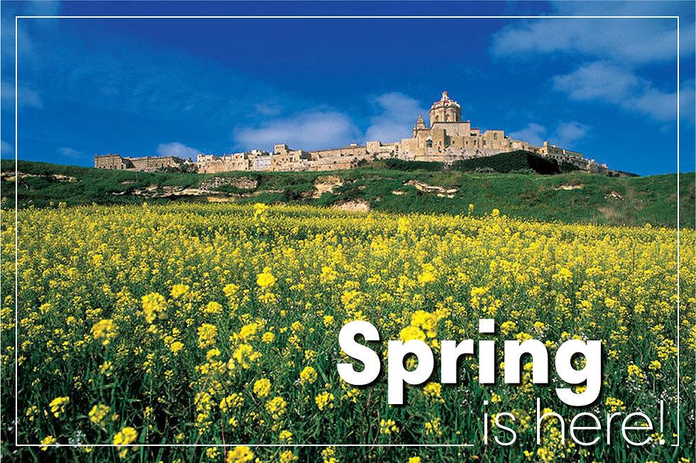 Spring is here.jpg