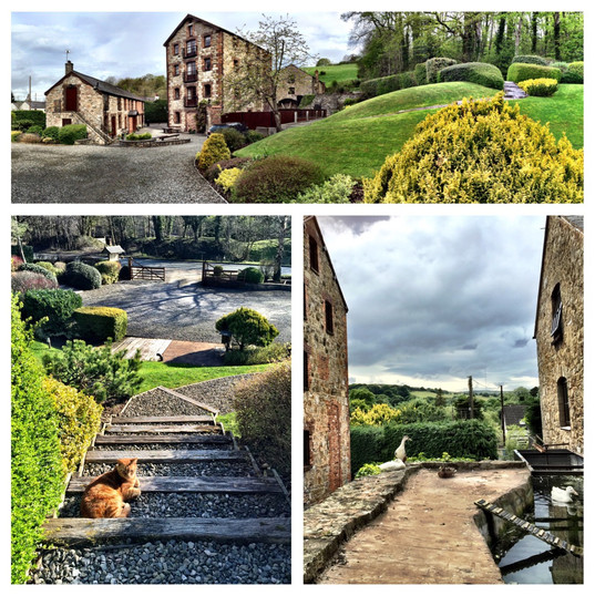 The Old Mill Holiday Cottages CH7 5RH