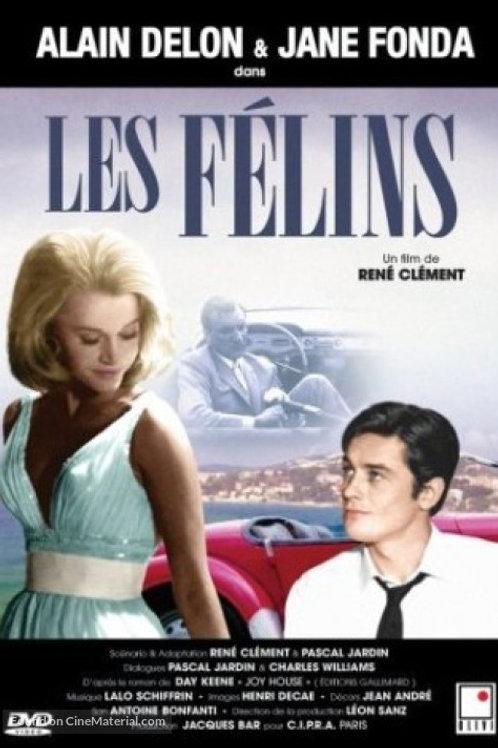 A JAULA AMOROSA (Les Felins, 1964)