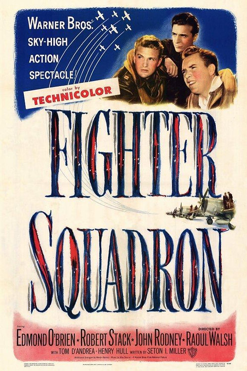 SANGUE, SUOR E LÁGRIMAS (Fighter Squadron, 1948)