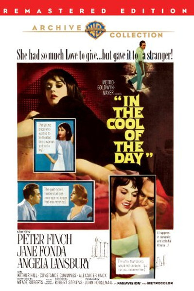 CICATRIZES D'ALMA (In The Cool of The Day, 1963)