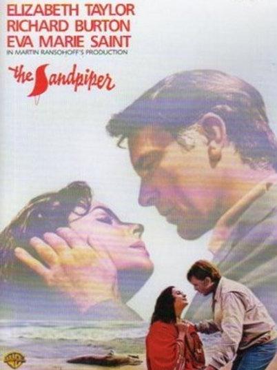 ADEUS ÀS ILUSÕES (The Sandpiper, 1965)