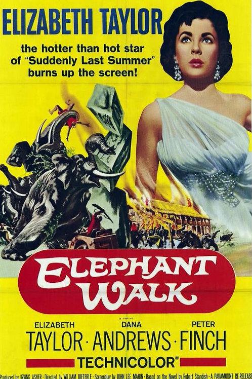 NO CAMINHO DOS ELEFANTES (Elephant's Walk, 1954)