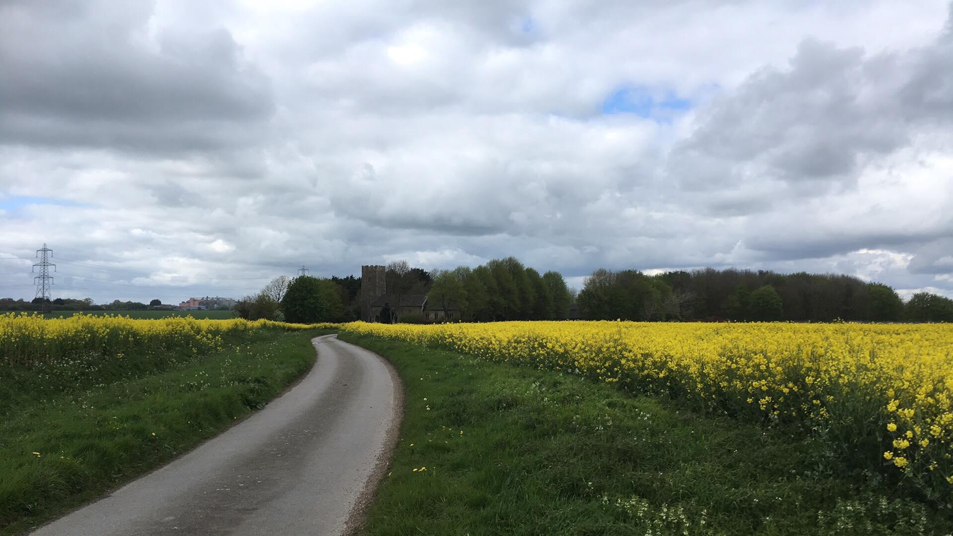 Stoney Road