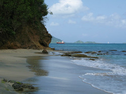 wandering the beach