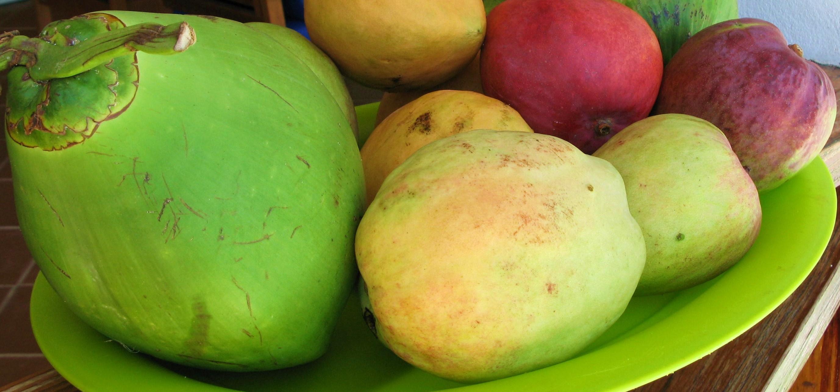 munch tropical fruit