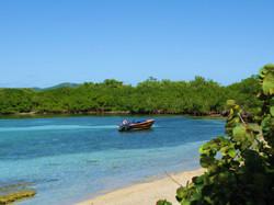 visit saline island