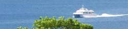 osprey ferry