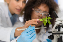 Create the East West Biotechnology Manufacturing Corridor
