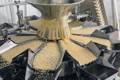 Establish The Brechin Castle AgroProcessing Complex