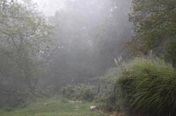 Der grosse Regen