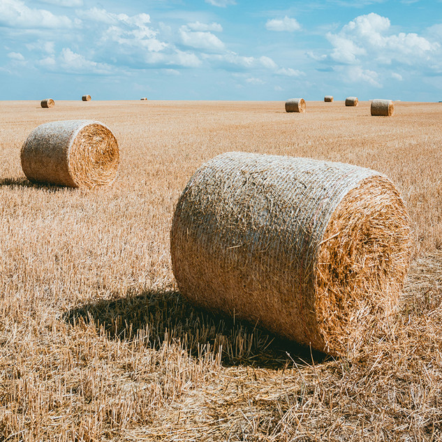 haybales_upload.jpg