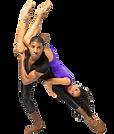 FAVPNG_ogden-symphony-ballet-association