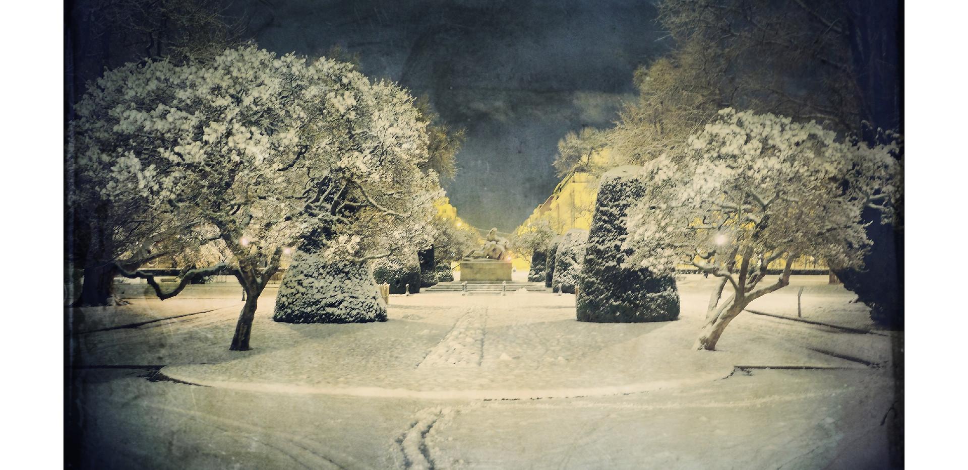 Snow_17