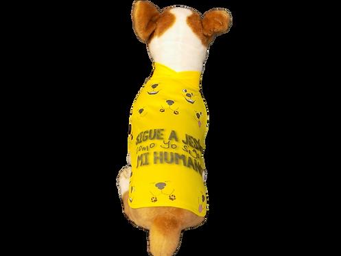 "Dog T-Shirt Dog Shirt with Inspirational Msg  ""Sigue a Jes?s"""