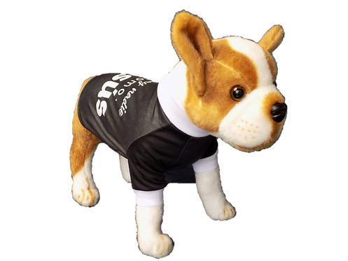 """Dog T-Shirt Dog Shirt with Inspirational Messages """"There is no body like Jesus"""""""