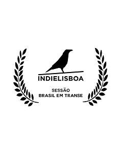 indielisboa.jpg