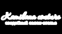 Лого на прозрачном фоне белые буквы.png