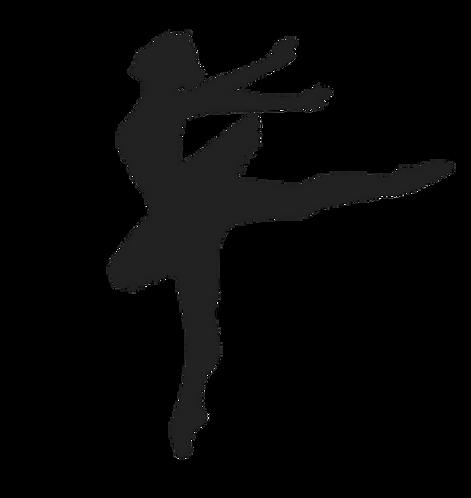 Grades 2-6 - Pink Ballet Tights