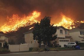 wild fire.jpg