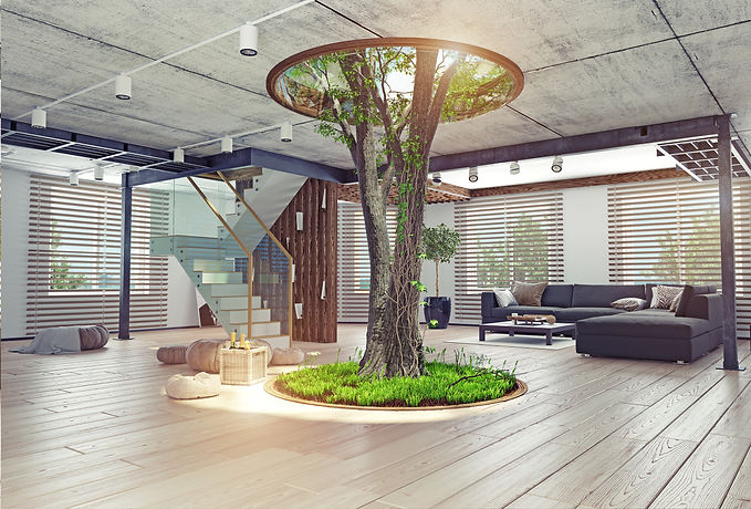 eco design of the modern interior. Real living tree indoor. 3d concept.jpg