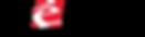 sebile logo.png