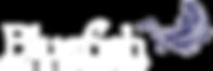 bluefish-logo.png