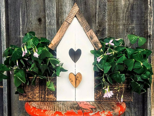 DIY Painted Birdhouse Planter Kit