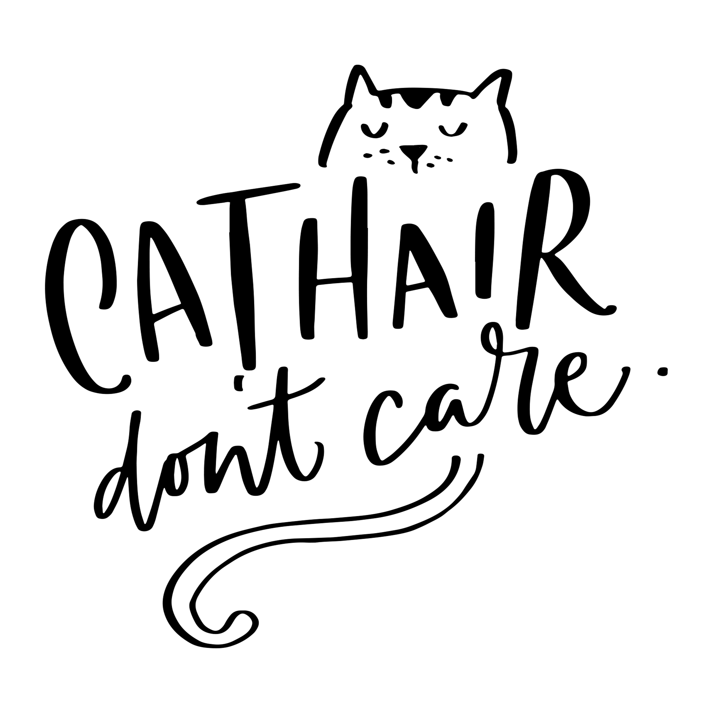 2.  Cat Hair Don't Care