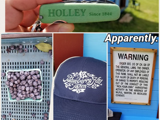 HOLLEY Action & Adventure Everywhere!
