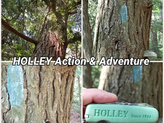 Relief = HOLLEY Action & Adventure.