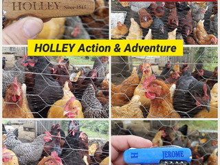 Beautiful Chickens HOLLEY Action & Adventure
