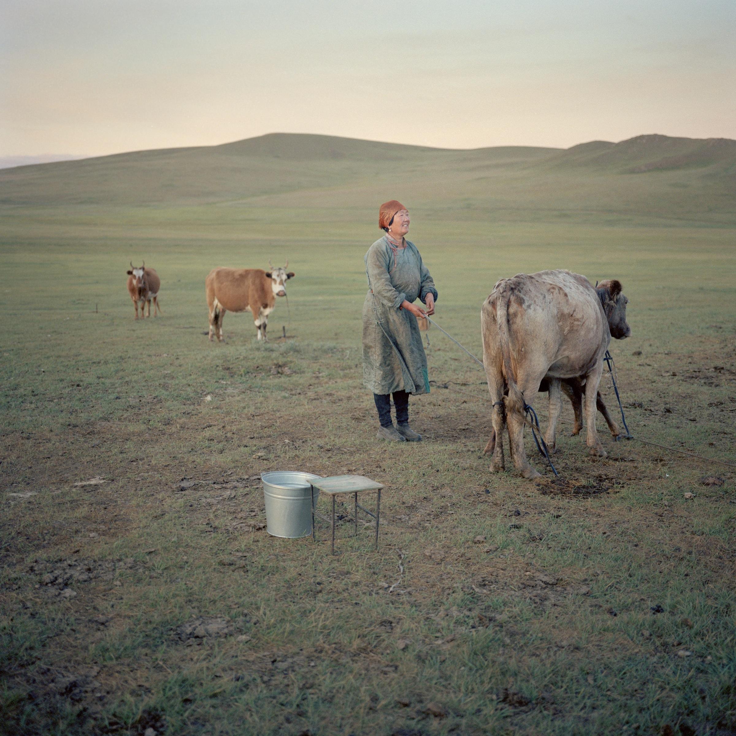 Goia_Mongolia_07.jpg