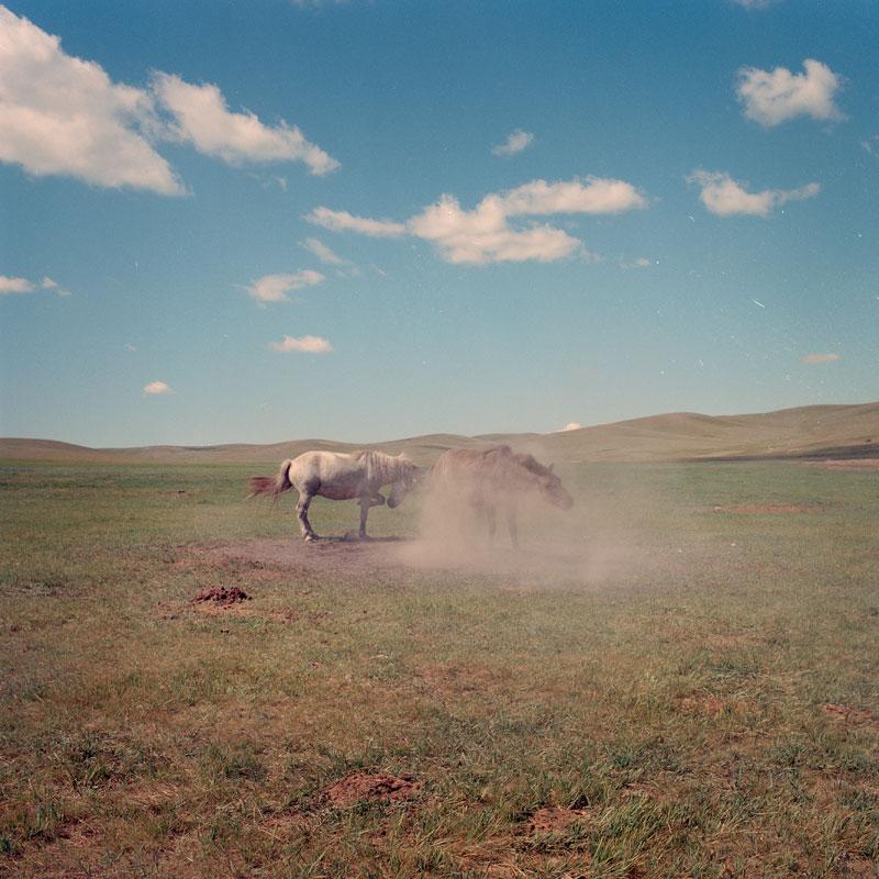 Goia_Mongolia_14.jpg
