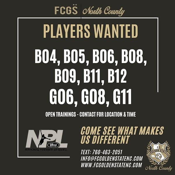 Players Wantedv2 (2).jpg