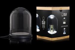 Bell Jar Light